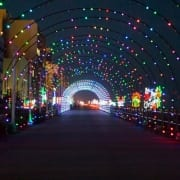 Virginia Beach hotel - events - Holiday Lights Merry Mile